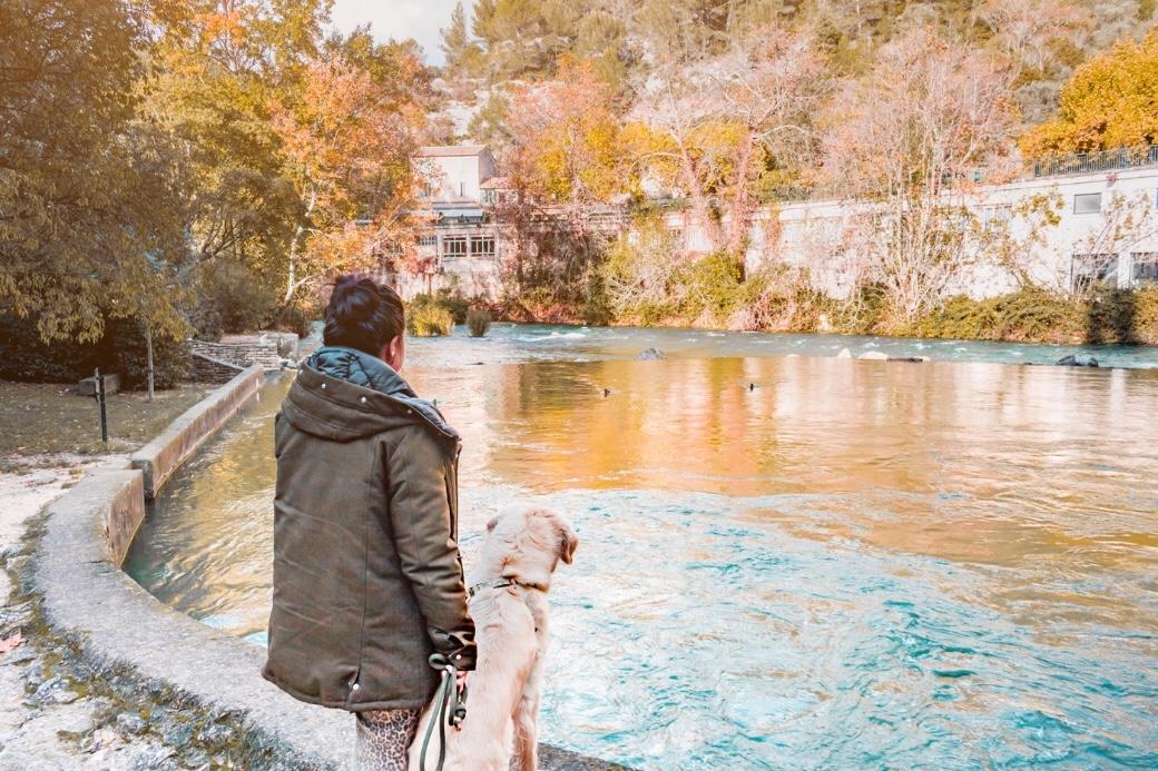 Fontaine de Vaucluse avec son chien