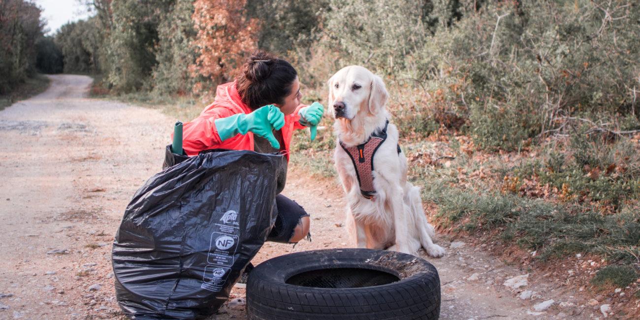 Clean Walk avec son chien