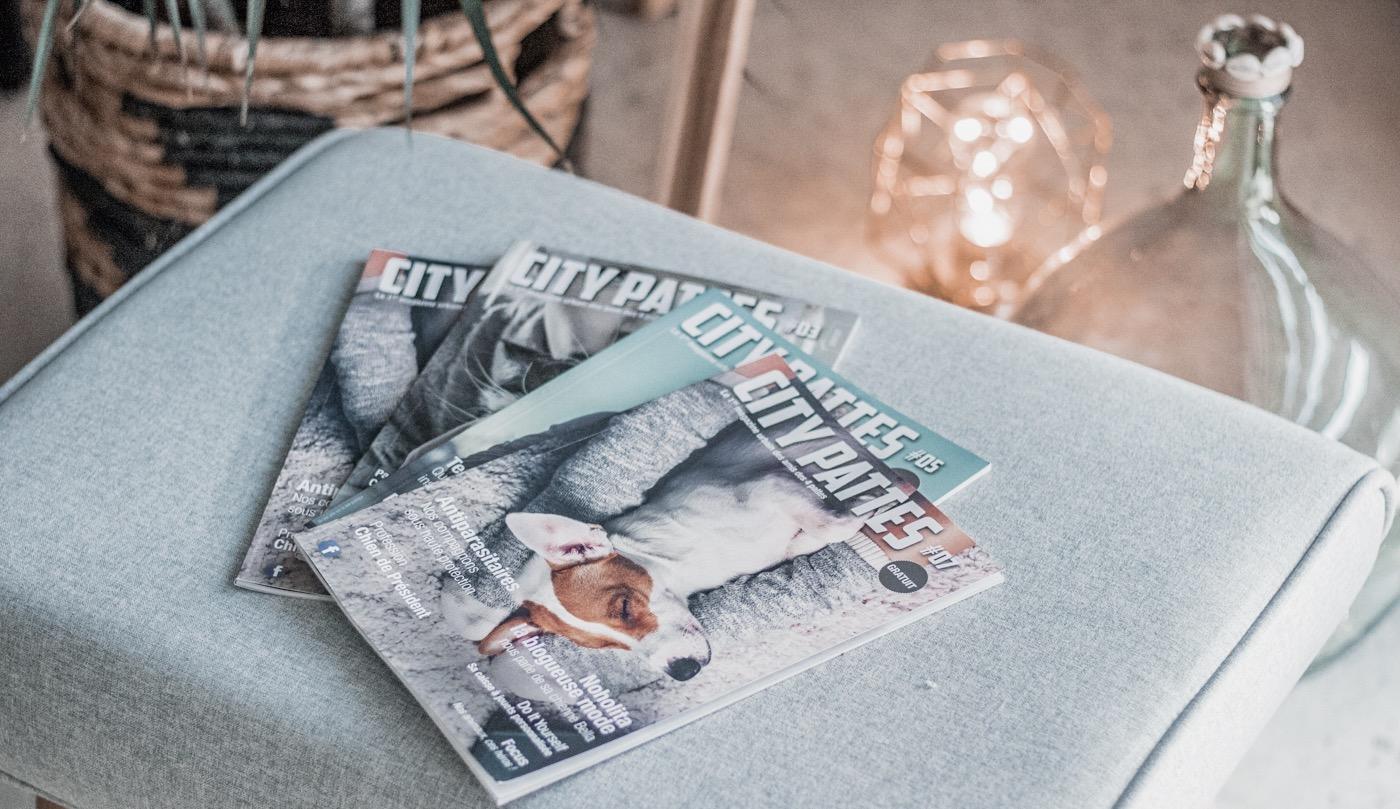 City Pattes magazine