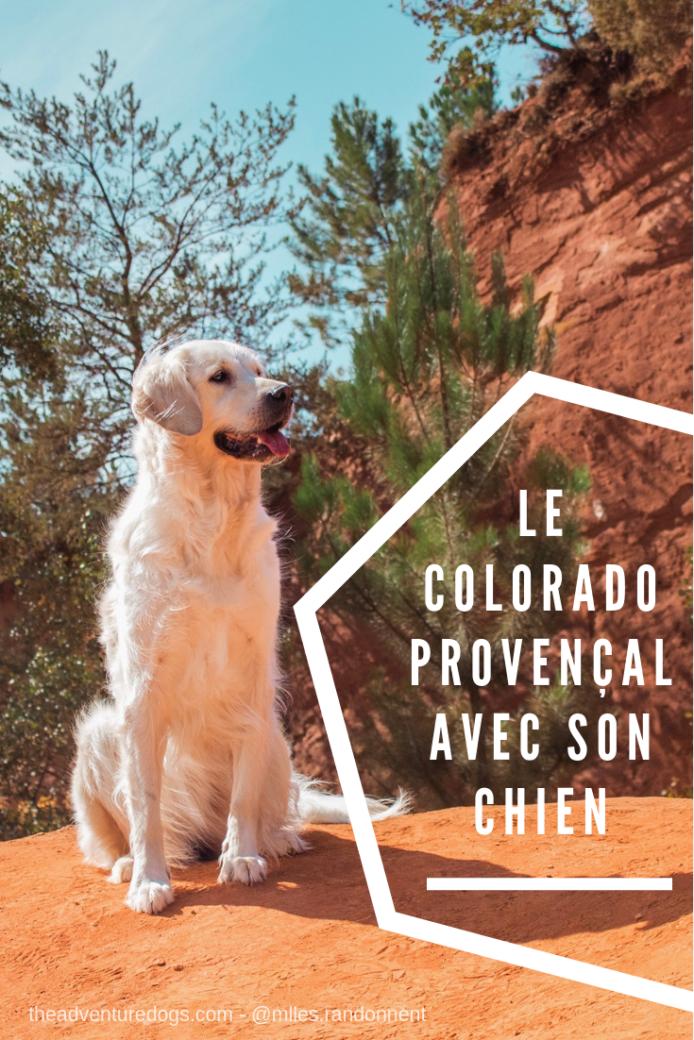 Pinterest Le colorado provencal avec son chien