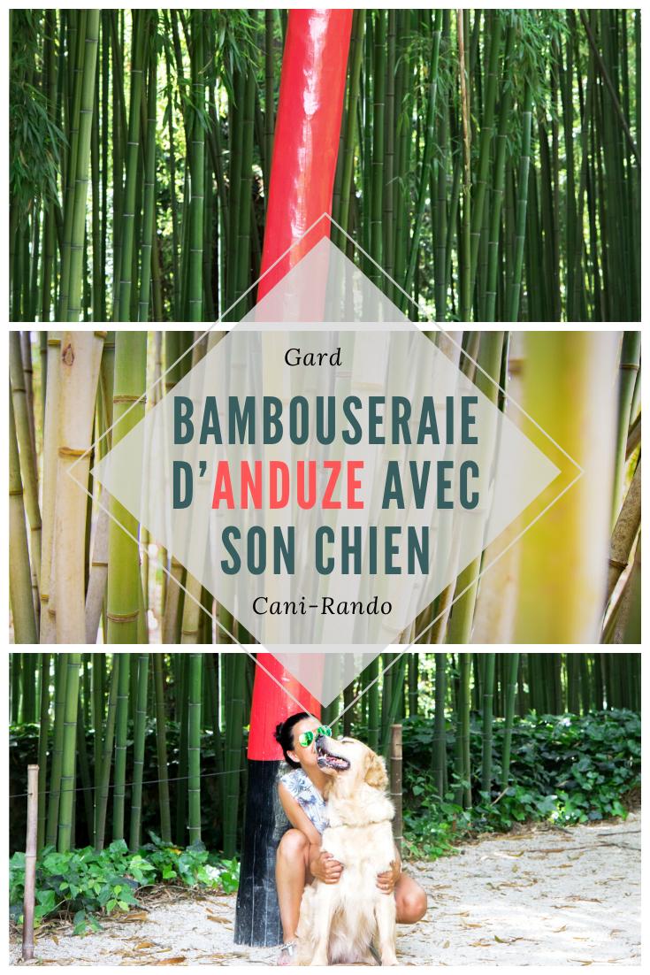 La bambouseraie d'Anduze avec son chien