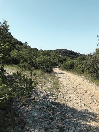 Photo  5 - Chemin à gauche du passage rocheux