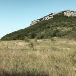Photo 7 - Vaste prairie