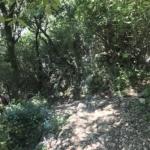 Photo 11 - Cul de sac + Descende du chemin rocailleux