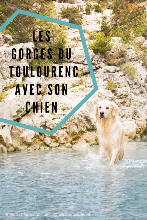 Les Gorges du Toulourenc avec son chien