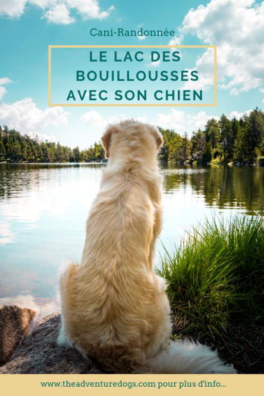 Le lac des Bouillouisse avec son chien
