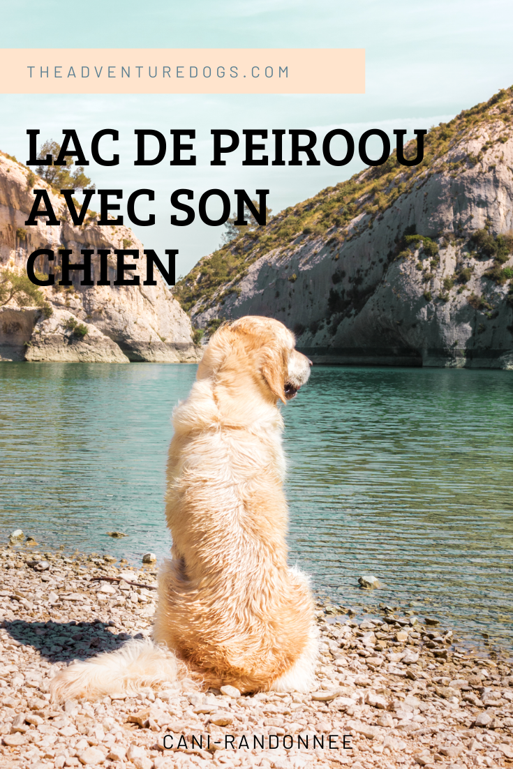 Lac de Peiroou avec son chien